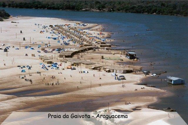praia_gaivota
