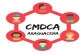 Conselho Municipal dos Direitos da Criança e Adolescente – CMDCA, torna público a Resolução nº 01/2019.
